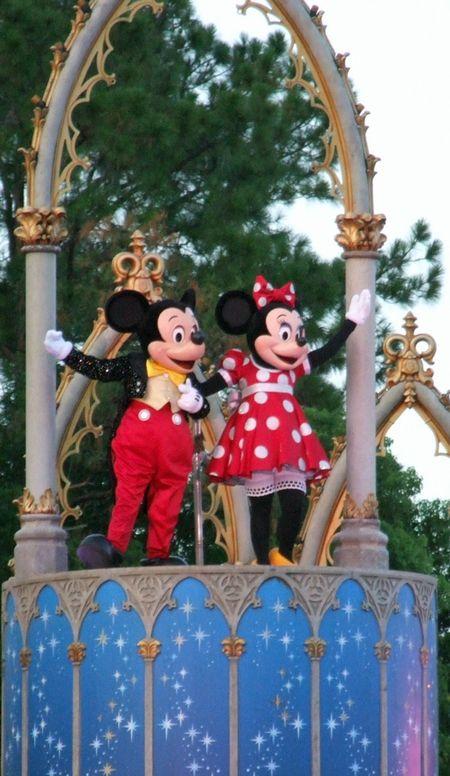 Mk-mice