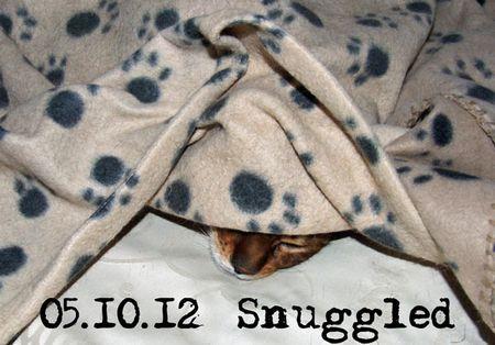 279-snuggled