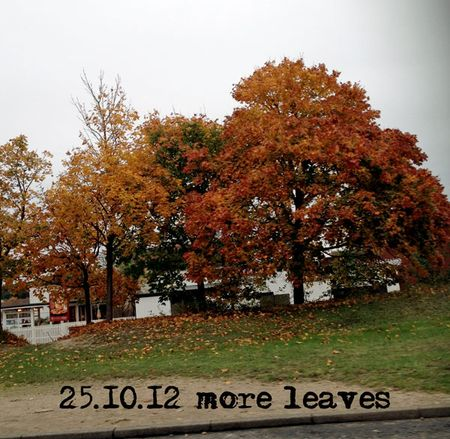 298-autumn-again