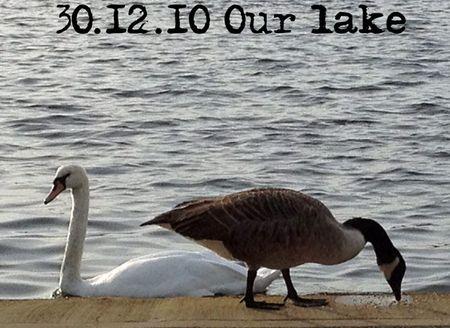 303-lake