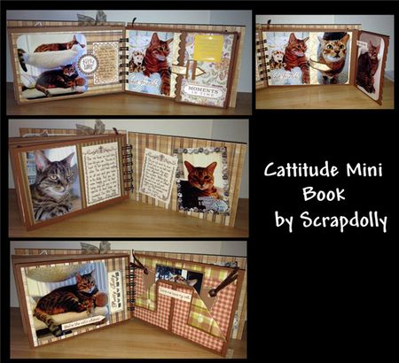 Cattitude-last-few-pages