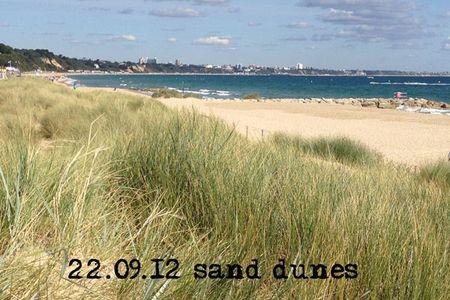 266-sand-dunes