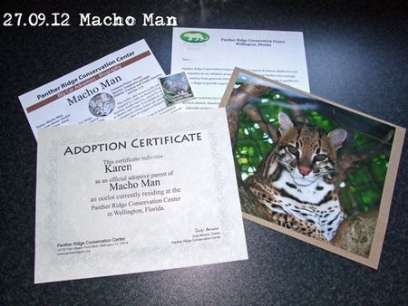 271-Macho-Man