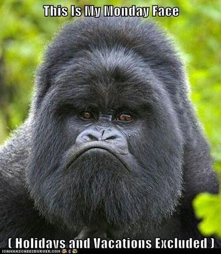 Monday face
