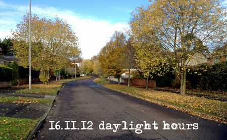 319-in-the-daylight
