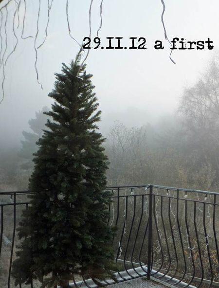 334--first