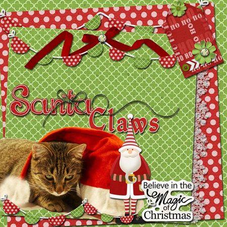 Nu-christmas-santa-cat
