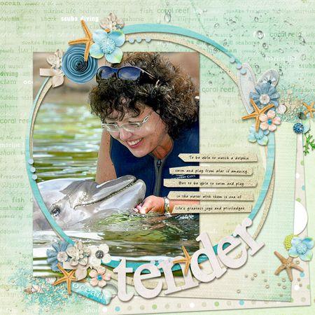 Dolphin-tender