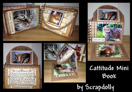 Cattitude-flaps-pages-all