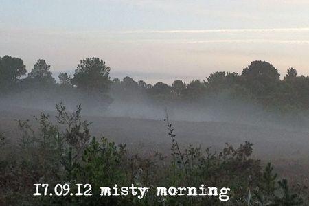 261-morning-mist