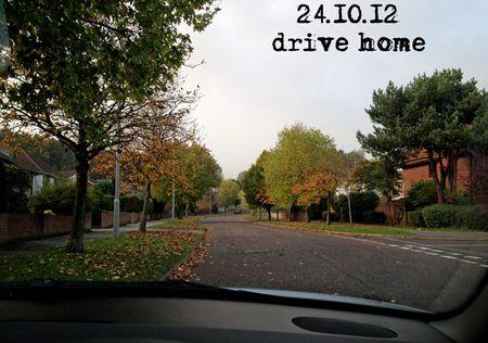 297-autumn-leaves