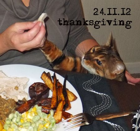 327-Thanksgiving