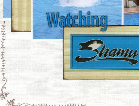 Shamu-detail