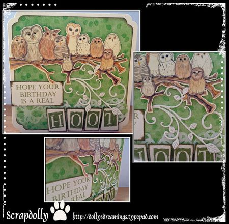Owl-card-green-all