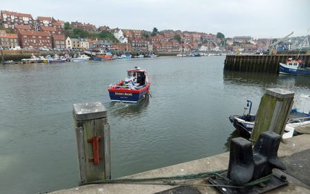 Whitby (3)