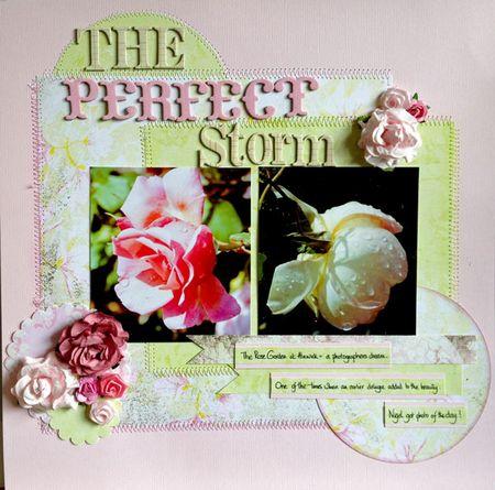 Perfect-storm nu