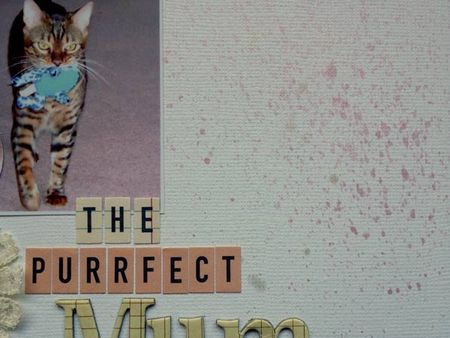 The-Purrfect-Mum.4