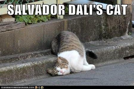 Dali's cat