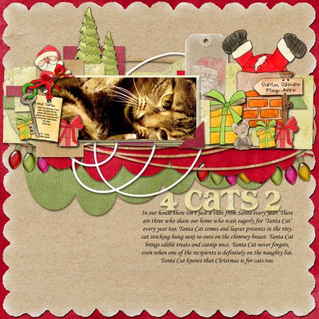 Cat's-christma