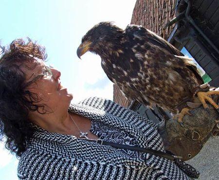 Birds-karen-eagle