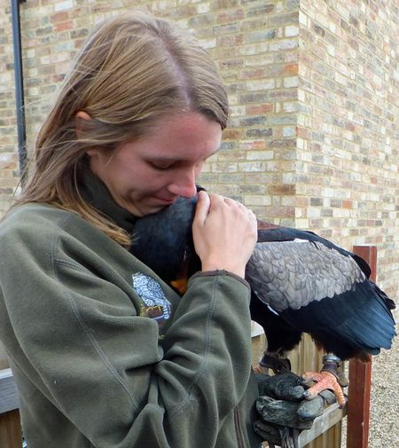 Birds-Carly-Sid