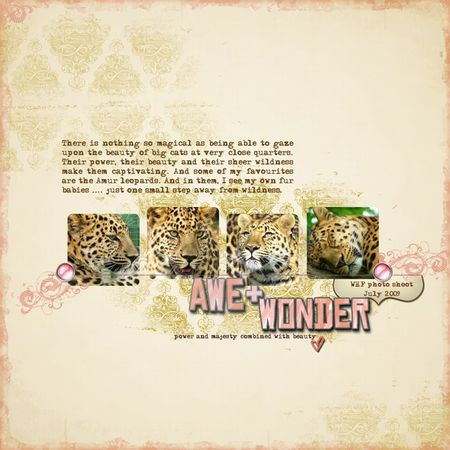 Awe-and-wonder