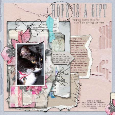 Hopes-deams