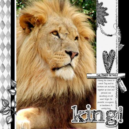 Tinker-king