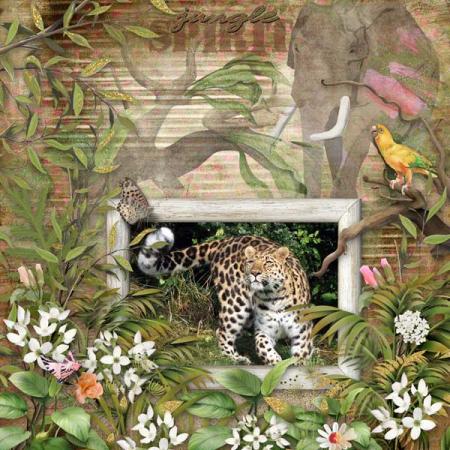 Jungle-spirit-full