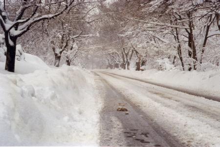 Snow 15 a
