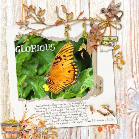 Wilderness-butterfly