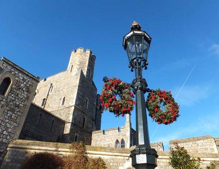 Windsor-11