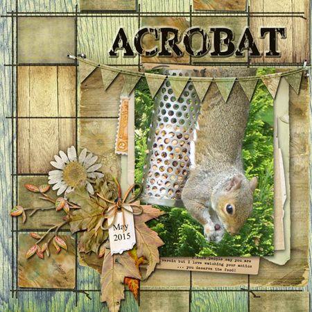 Acrobat-web