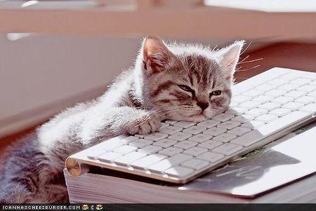 Sleep computer
