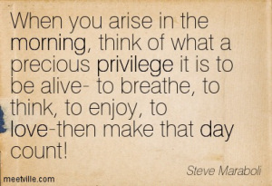 Quotation-steve-maraboli-gratitude-life-love-success-morning-privilege-day-meetville-quotes-225700