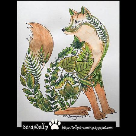 Fox---1st