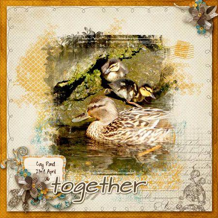 Together-ducks