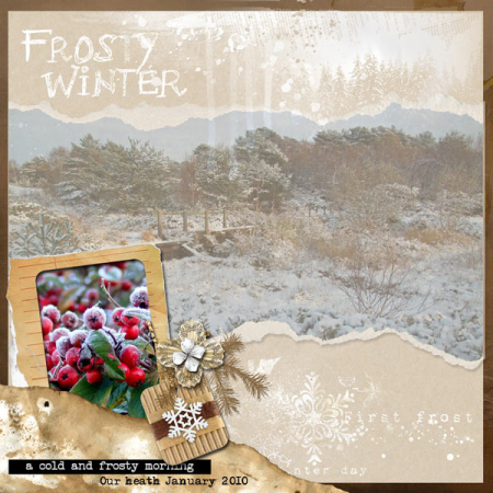 Frosty-winter