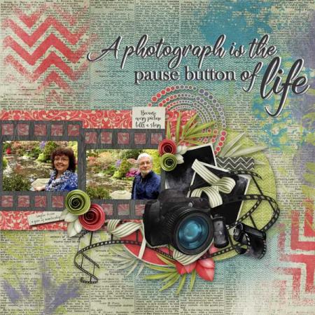 Snapshots-of-life