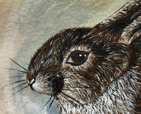 Benningfield rabbit 1