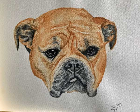 Dog-watercolour