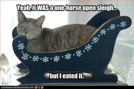 One horse sleigh