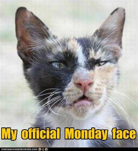 Monday 7