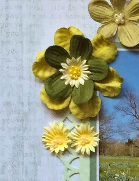 Petworth-spring-1