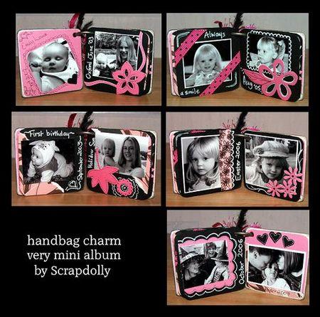 Handbag charm all