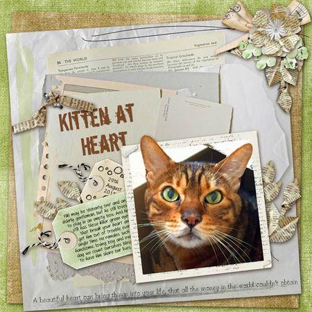 Kitten-at-heart