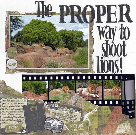 Proper-way-to-shoot-lions