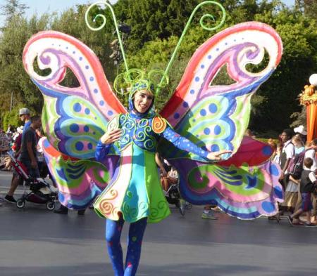 13-butterfly
