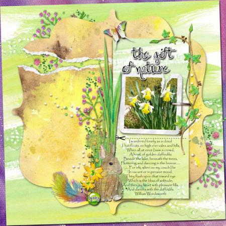 Fragile daffodils