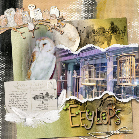 Owl Kingdom eeylops